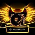 Levanta o Vestido (DJ Magnum Remix extented Bootleg)