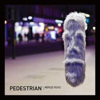 Pedestrian - Hoyle Road (FaltyDL Remix)