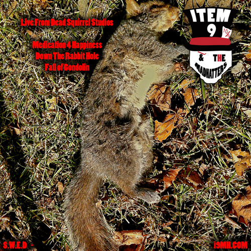 Live From Dead Squirrel Studios