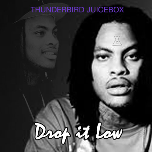 Thunderbird Juicebox - Drop it Low