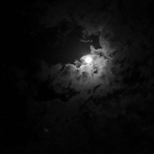 القمر باكر